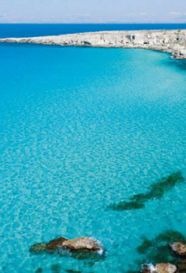 Boat trip to Favignana and Levanzo